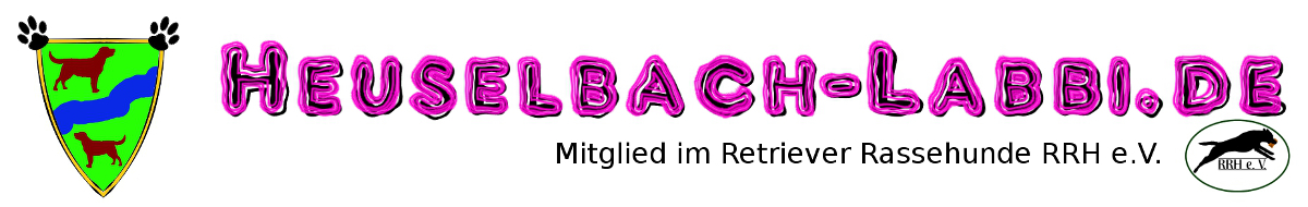 heuselbach-labbi.de