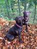 Mia und Lucy_1