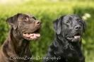 Mia und Lucy